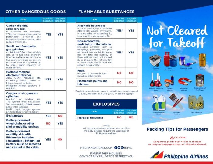 restricted items on airplanes
